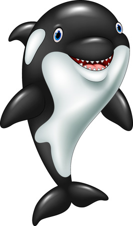 Vector illustration of Cartoon funny killer whale standing
