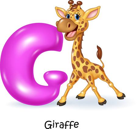 Vector illustration of G letter for Giraffe Illustration