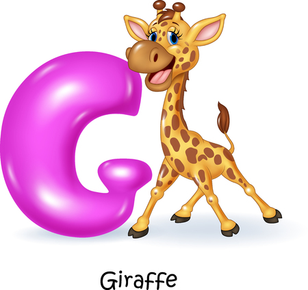 g giraffe: Vector illustration of G letter for Giraffe Illustration