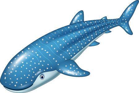 Vector illustration of Cartoon whale shark isolated on white background Иллюстрация