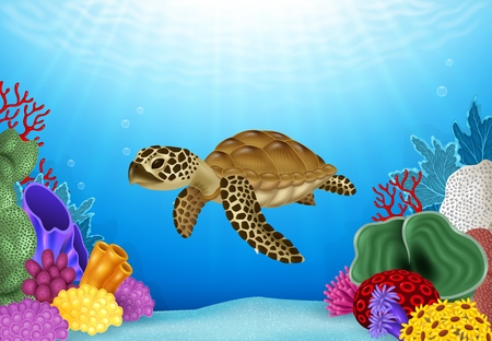 sunray: Vector illustration of Turtle with beautiful underwater world Illustration