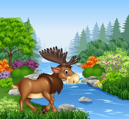 Vector illustration of Cartoon moose with big horns in Beautiful river in forest Illustration