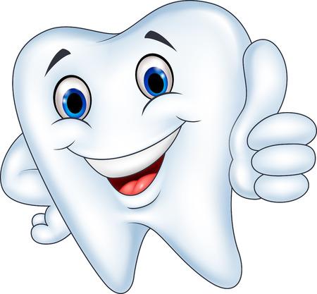 dientes sanos: Ilustración vectorial de dibujos animados del diente con el pulgar arriba