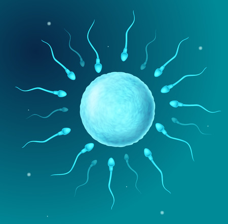 sperm cell: Vector illustration of Cartoon perms going to the ovule Illustration