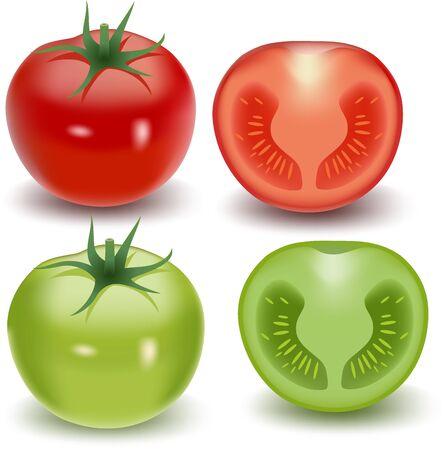 carotene: Vector illustration of Fresh tomato collection set