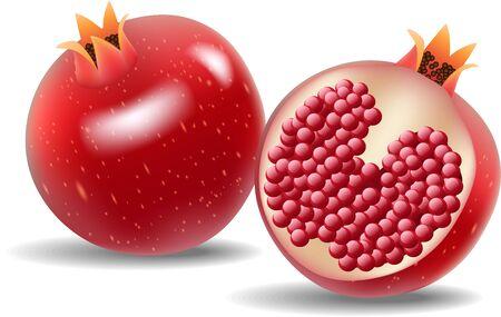 fruit cartoon: Vector illustration of Cartoon fresh pomegranate isolated on white background