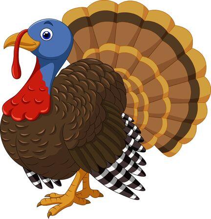 Vector illustration of Cartoon turkey character
