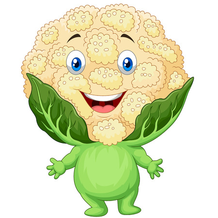 brassica: Vector illustration of Happy cauliflower cartoon Illustration
