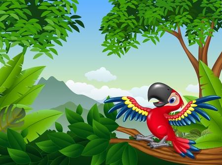 guacamaya caricatura: ilustración de dibujos animados de guacamayos en la selva Vectores