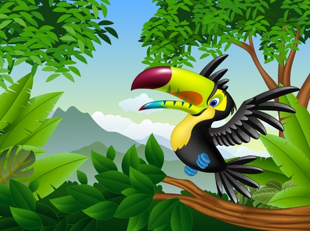 illustration of Cartoon toucan in the jungle