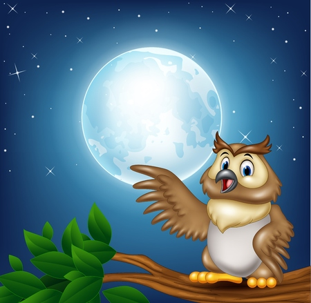 illustration of Cartoon owl on a tree branch in the night