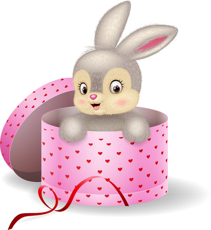 valentine card: illustration of Cartoon bunny in a gift box Illustration