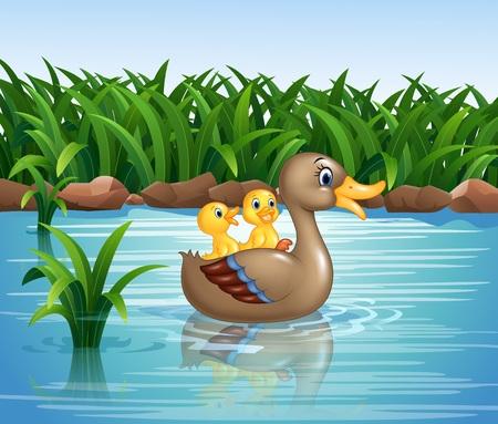 Ilustración de la familia de patos de natación