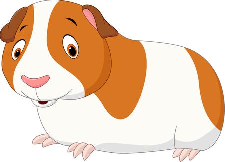 guinea pig: illustration of Cartoon funny hamster isolated on white background Illustration