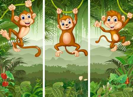 tranquil scene: illustration of Set of three monkey with tropical forest background