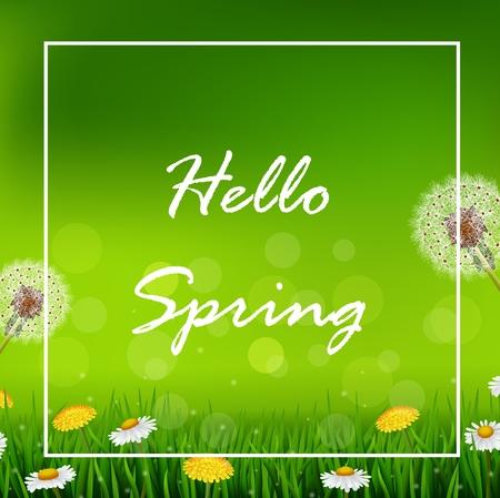 summer nature: illustration of Beautiful Spring or summer season nature background Illustration