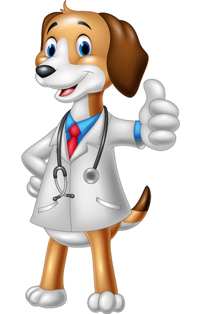 doctoral: illustration of Cartoon dog wearing a veterinarians costume giving a thumbs up