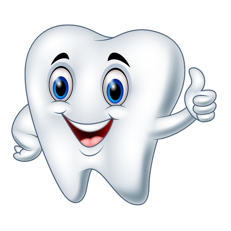 cleanliness: Vector illustration of Cartoon tooth giving thumbs up