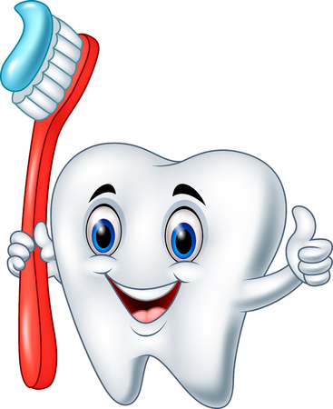 Vector illustration of Cartoon tooth holding a tooth brush giving thumb up