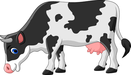 udders: Vector illustration of Cartoon cow isolated on white background