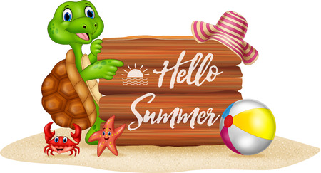 summer sign: Vector illustration of Summer holiday with cartoon turtle and wooden sign Illustration