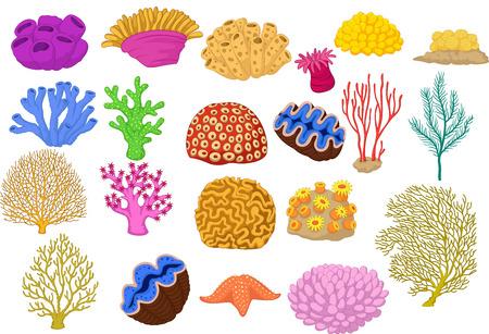벡터 일러스트 레이 션의 다채로운 산호, 클램프와 불가사리 집합 벡터 (일러스트)