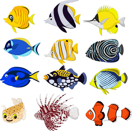 Vector illustration of Cartoon tropical fish collection set