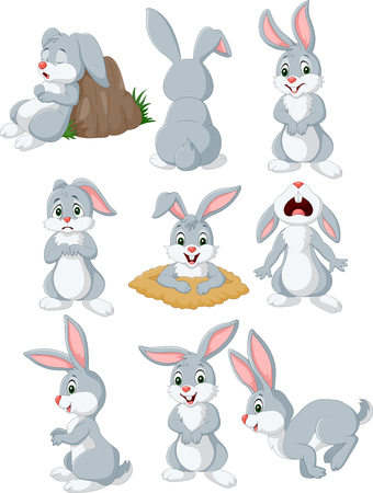 Cartoon rabbit with different pose and expression