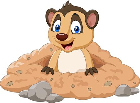 Vector illustratie van Cartoon meerkat in een gat