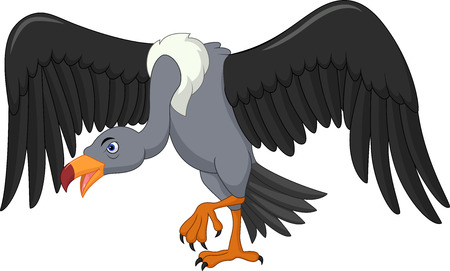 Vector illustration of Vulture bird cartoon Illustration