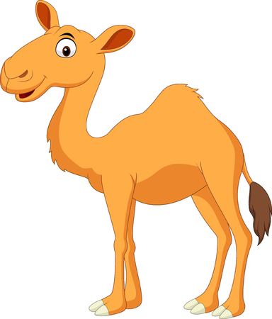 Vector illustration of Cute camel cartoon