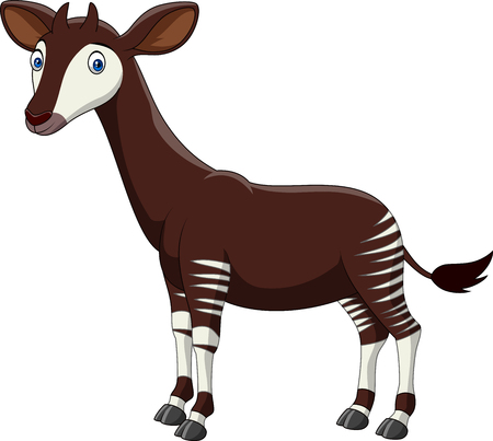 Vector illustration of cartoon okapi isolated on white background