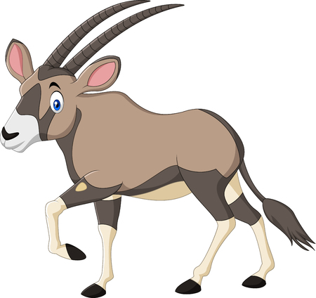 Vector illustration of Cartoon orix gazelle isolated on white background