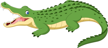 Vector illustration of Cartoon crocodile isolated on white background