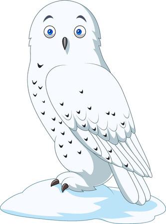 Vector illustratie van Cartoon Arctic Uil geïsoleerd op een witte achtergrond