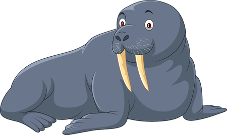 Vector illustration of Cartoon walrus isolated