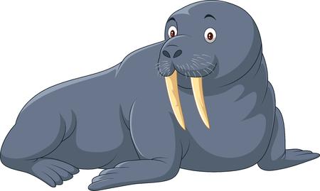Vector illustration of Cartoon walrus isolated
