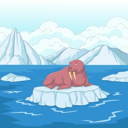Vector illustration of Cartoon walrus on ice floe