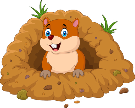 Vector illustration of Cartoon groundhog looking out of hole Banco de Imagens - 86194284
