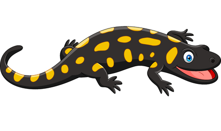 Salamandra felice del fumetto isolata su priorità bassa bianca