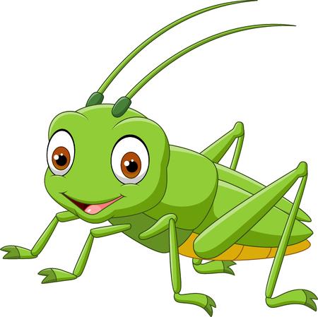Cartoon grasshopper isolated on white background