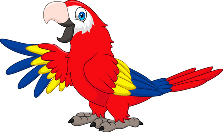 Cartoon funny macaw