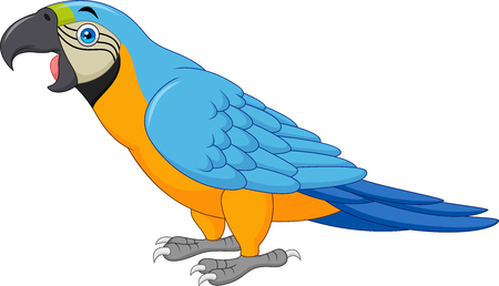 Blauer Ara der Karikatur lokalisiert auf weißem Hintergrund Vektorgrafik