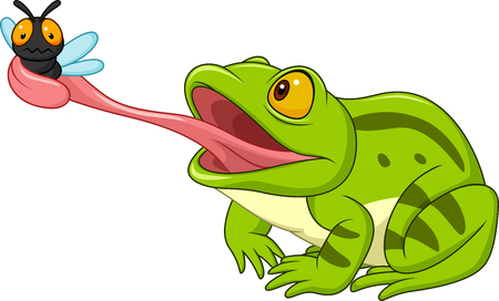 Cartoon frog catching fly Ilustracja