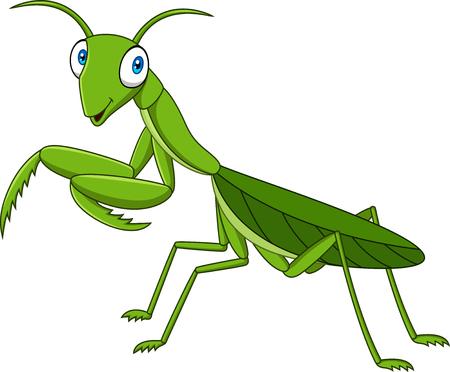 Cartoon green mantis Archivio Fotografico - 102514111
