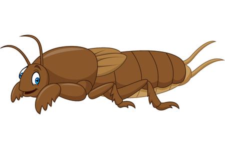 Cartoon mole cricket Illustration