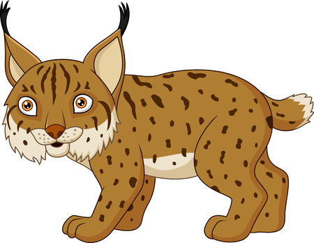 Cartoon lynx isolated on a white background