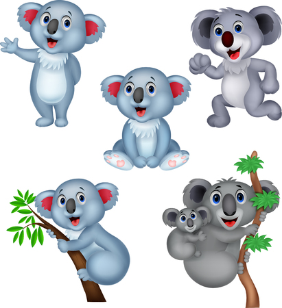 Cartoon koala collection set Illustration