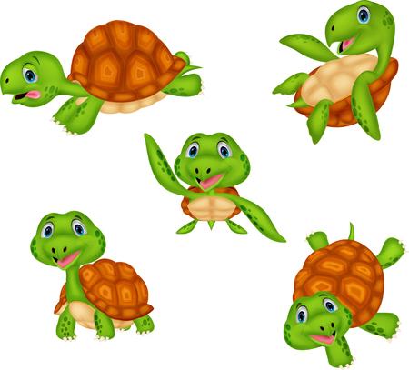 Cartoon schildpad collectie set