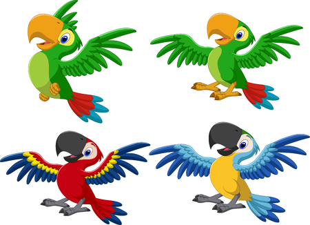 Vector illustration of Cartoon macaw collection set